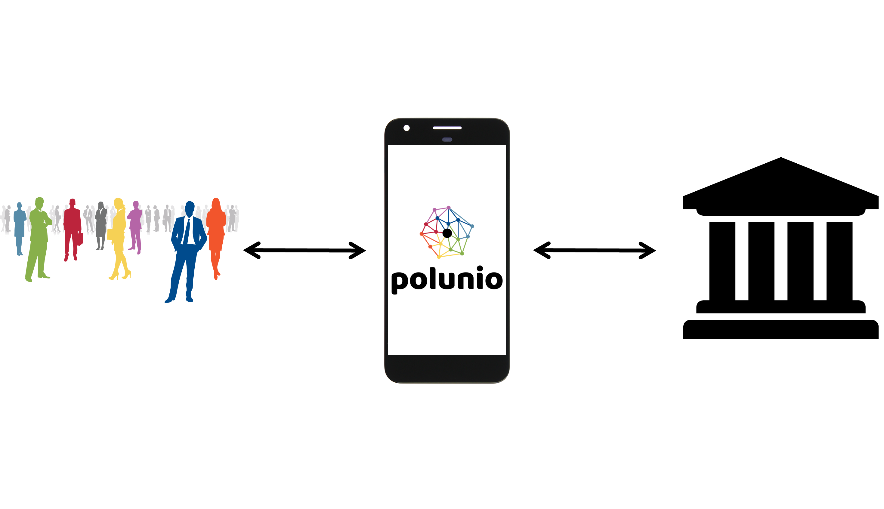 process of polunio